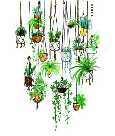 2017-green-hangingplants-jpg