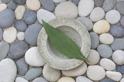 zen-09-13-028-1-jpg