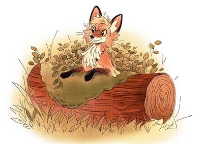 playful-fox-jpg