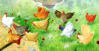 chickenfamilylr-png
