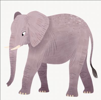 elephantlr-png-1