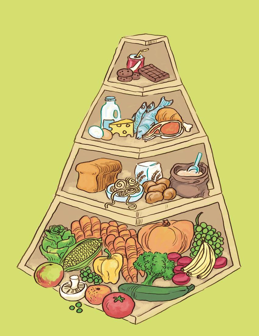 foodpyramidLR.jpg