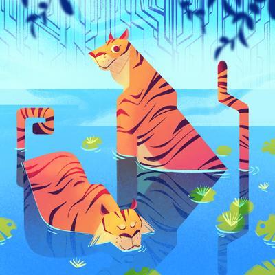 tigerlr-jpg