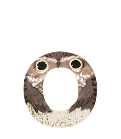 animal-alphabet-letter-o-baby-owl-jpg