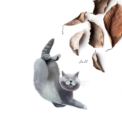 kitty-cat-fall-falling-leaves-autumn-jpg