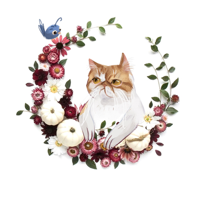 kitty-cat-flowers-collage-grumpy-jpg