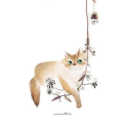 kitty-cat-long-hair-flower-cream-jpg