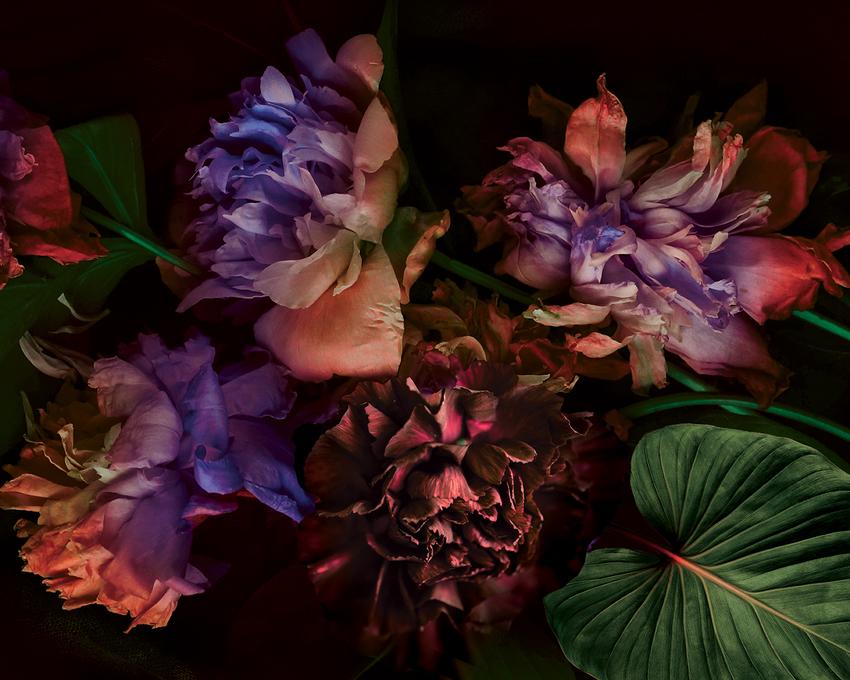 LSK_Floral Big Blooms Citrus.jpg
