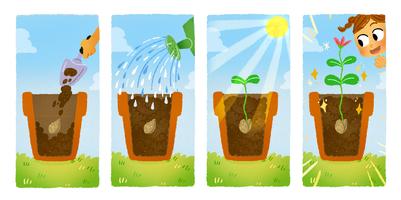 plants-jpg-1