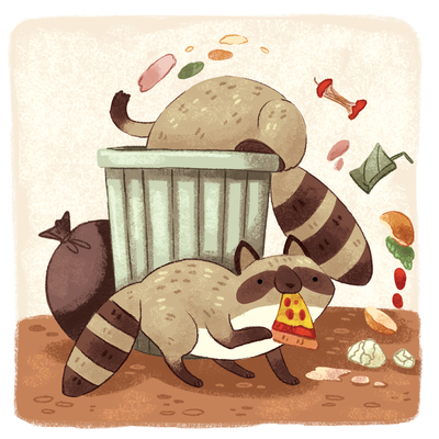 funny-raccoon-garbage-animals-cute-jpg