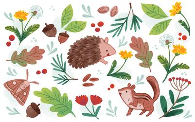 pattern-hedgehog-moth-leaves-chipmunk-plants-nuts-seeds-jpg