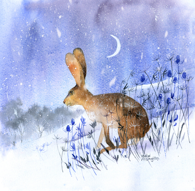 winter-hare-jpg