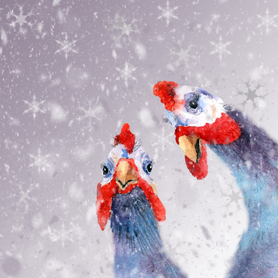 xmas-guinea-fowl-jpg