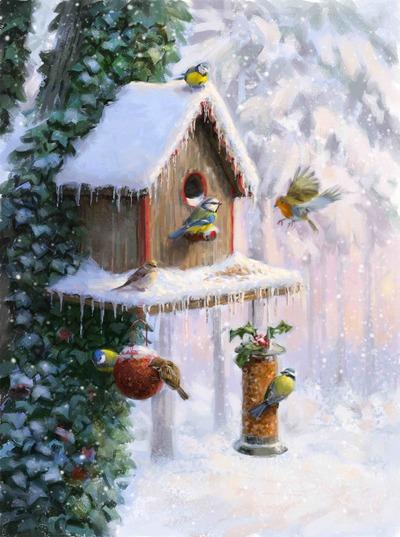 birdbox-85-0026-jpeg