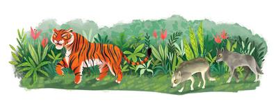 thejunglebook-tigerwolvessample-jpg