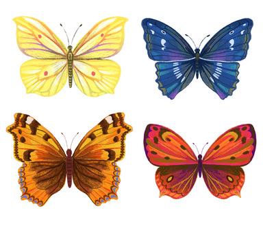 butterfliessample-jpg