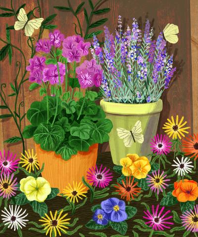 pottedplantsbutterflies-jpg