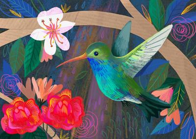 hummingbirdsample-unavailable-jpg