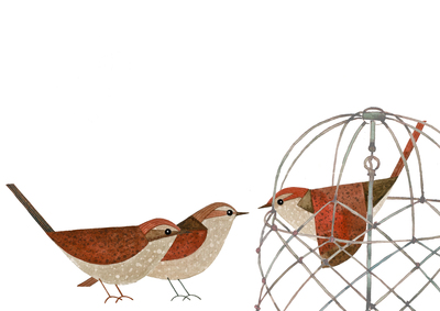 birds-cage-jpg