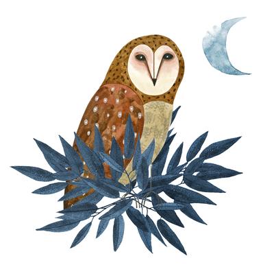 owl-plant-moon-jpg