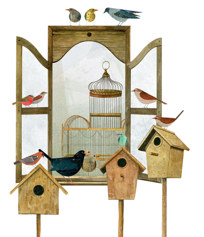 window-birds-cages-jpg