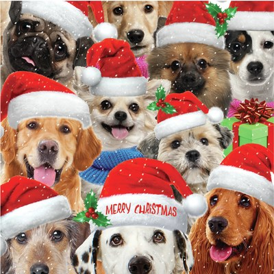 h-wood-xmas-dog-card-jpg-1