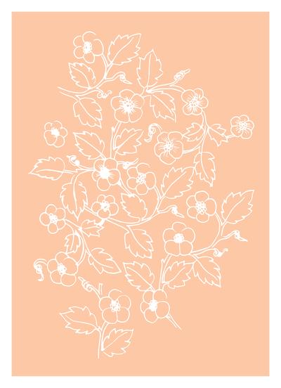 ap-blackberry-bush-botanical-drawing-01-jpg