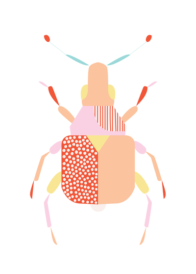 ap-geo-bug-insect-nature-geometric-05-01-jpg