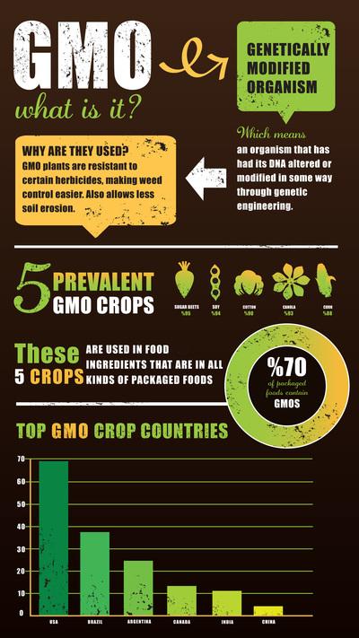 gmo-infographic-jpg