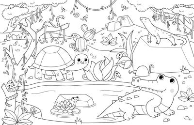 bk109788-lineart-coloring-reptiles-crocodile-tortoise-snake-jpg