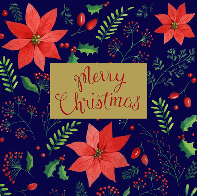 estelle-corke-christmas-poinsettia-merry-christmas-jpg