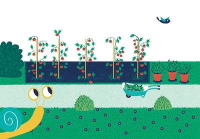 garden-snail-tomatoes-jpg