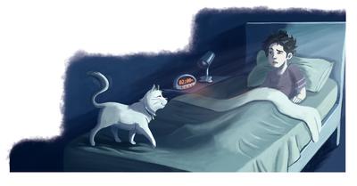 cat-boy-bed-surprise-by-evamorales-unavailable-jpg