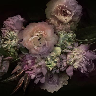 lsk-collector-dark-florals-peony-cluster-jpg