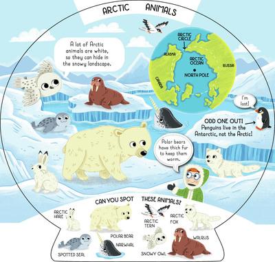animals-arctic-world-jpg
