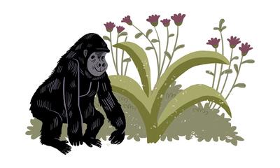 kwibi-1-jungle-gorilla-jpg