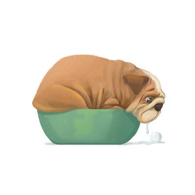 bulldog-drool-cute-dog-resized-jpg