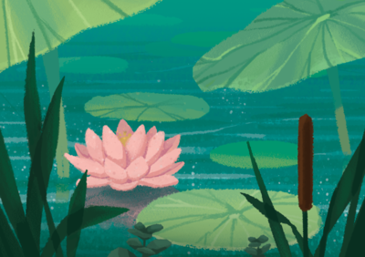 lotus-flower-lily-pad-pond-png