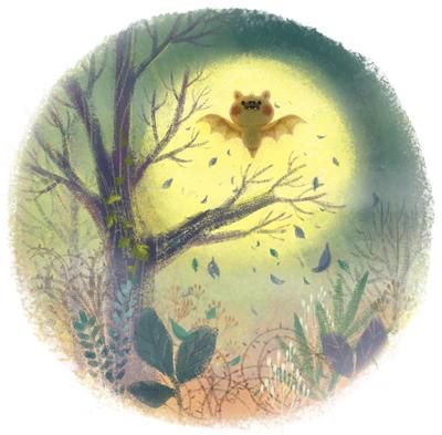 fullmoon-forest-littlebat-jpg