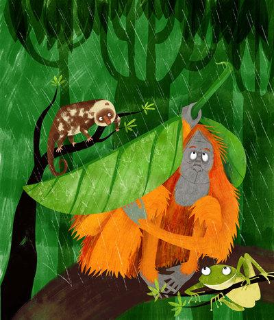 elissambura-orangutan-jpg
