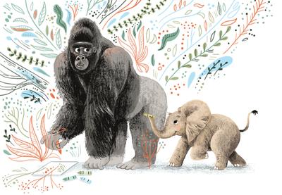gorilla-jpg-5