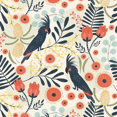 black-cockatoos-aa-lowres-jpg