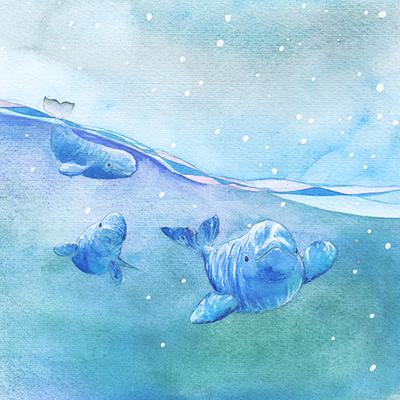 belugas-low-res-jpg