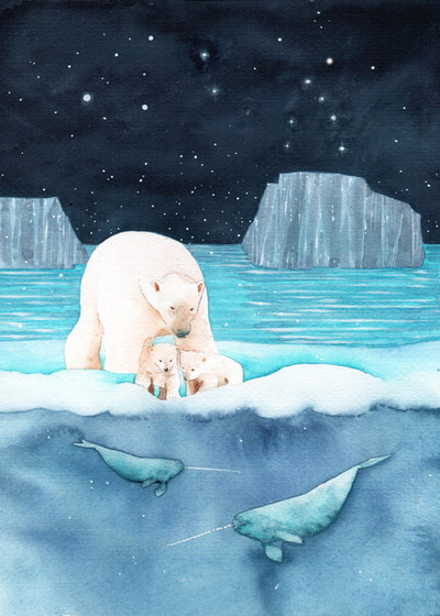 bears-and-narwhals-low-res-jpg