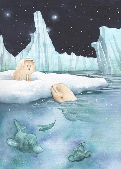 arctic-fox-and-beluga-low-res-jpg