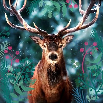 deer-jpg
