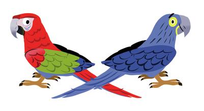 two-parrots-jpg