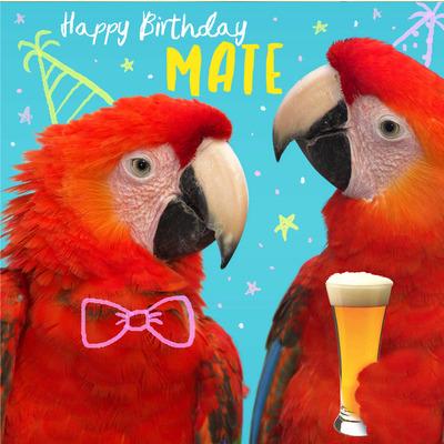 parrot-card-jpg