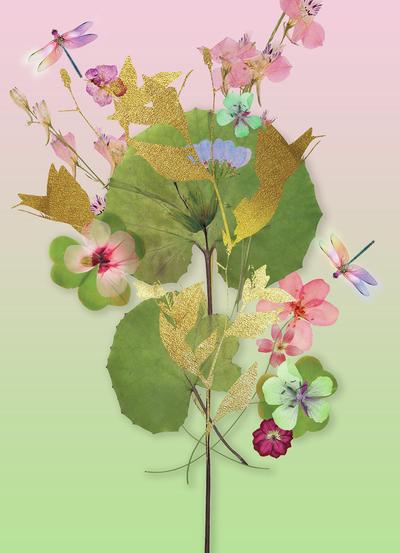 lsk-pressed-floral-lily-pad-jpg