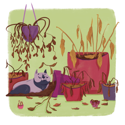 dead-plant-cat-jpg